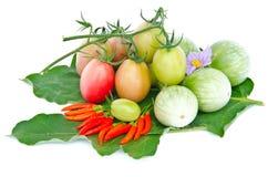 茄子、辣椒和蕃茄。 免版税库存图片