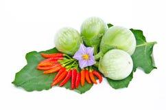 茄子和辣椒 免版税库存照片
