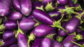 茄子紫色 免版税库存照片