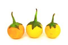 茄子组查出的黄色 免版税图库摄影