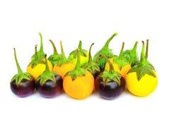 茄子组查出许多 免版税库存照片