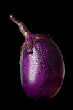 茄子黑色查出的蔬菜 免版税库存照片