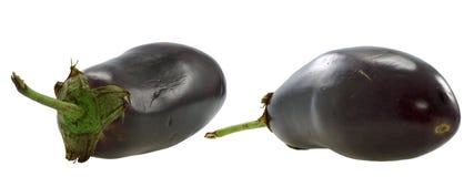 茄子 免版税库存图片
