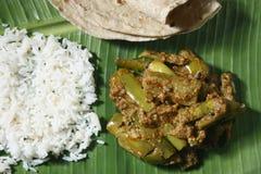 茄子Podi从印度的咖喱用米和roti 库存图片