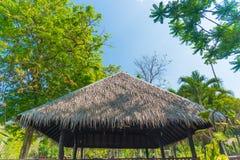 茅屋顶房子和一个绿色庭院有蓝天的在国家 免版税图库摄影