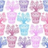 茅膏菜属植物样式 免版税库存图片
