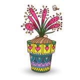 茅膏菜属植物 免版税库存照片