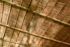 茅草屋顶屋顶 免版税图库摄影