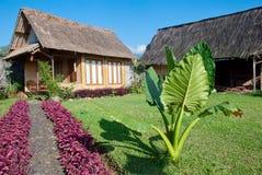茅草屋顶房子在绿色庭院里 免版税库存图片