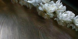 茉莉花和玫瑰 图库摄影