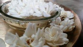 茉莉花和玫瑰 库存图片