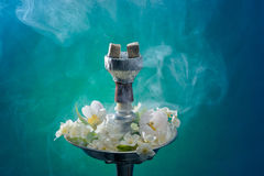 茉莉花气味水烟筒 免版税图库摄影