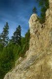 以阴茎的形式,环境美化与异常的形状岩石  库存照片