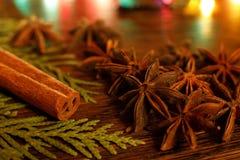 茴香和肉桂条在一张木桌上与五颜六色的聚焦 免版税库存照片