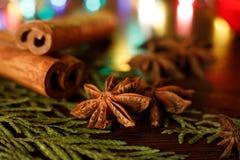 茴香和肉桂条在一张木桌上与五颜六色的聚焦 r E 免版税库存图片
