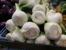 茴香电灯泡在农夫市场上在罗马 库存图片