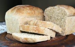 茴香种子面包 免版税库存图片