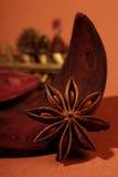 茴香草本印地安人星形 图库摄影