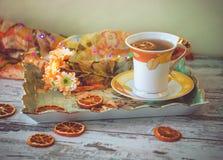 茶与干橙色切片的 免版税库存照片