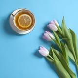 茶与柠檬桃红色郁金香花的布置的在蓝色背景 免版税库存图片