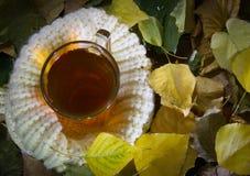 茶与秋叶的 教育的季节 在一个被编织的茶碟的杯,温暖的标志和舒适 免版税图库摄影