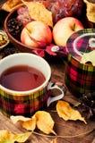 茶与秋叶的 免版税库存图片