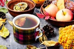 茶与秋叶的 免版税库存照片