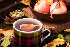 茶与秋叶的 库存图片