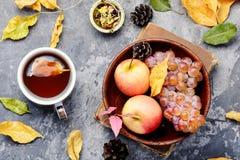 茶与秋叶的 免版税图库摄影