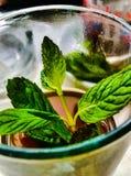 茶与薄荷的叶子的,传统饮料 免版税库存图片