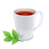 茶与绿茶叶子的 免版税库存照片
