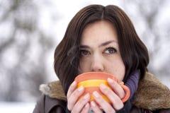 茶冬天 库存图片