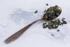 绿茶叶子在一把匙子的在白色背景 在一把古色古香的匙子的茶 免版税图库摄影