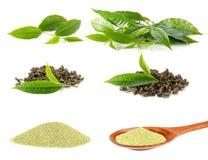 茶叶,干茶,茶粉末在白色背景的照片系列 免版税库存照片