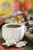 茶和姜饼干 免版税图库摄影
