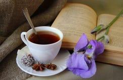 茶和开放书 免版税图库摄影