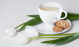 茶和白色郁金香花 免版税库存照片