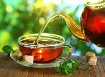 茶和茶壶。 免版税库存图片