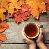 茶在手中,在木板的五颜六色的秋叶 仍然秋天生活 顶视图 免版税库存照片