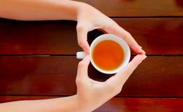 茶在手中,顶视图 免版税图库摄影