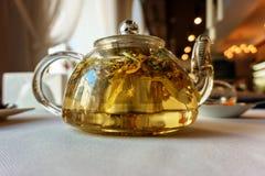 茶壶用酿造的绿色清凉茶 图库摄影