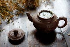 茶壶草本治疗绿茶 图库摄影