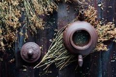 茶壶草本绿茶 库存图片