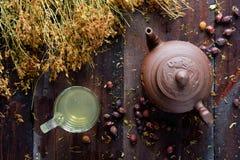 茶壶草本绿茶 图库摄影