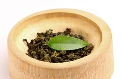 绿茶干,卷曲的叶子与一片新鲜的叶子的。 免版税库存图片