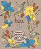 茶时间样式,棕色 Coloful传染媒介例证 免版税库存照片