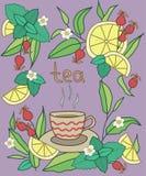 茶时间,明亮 五颜六色的传染媒介例证,紫罗兰色背景 库存图片