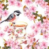 茶杯、鸟和开花的花 无缝花卉的模式 在白色背景的水彩艺术 库存图片