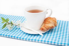 茶杯用新月形面包和樱花小树枝  免版税库存照片