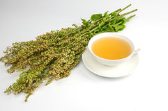 茶杯用新鲜的栗色茶 免版税库存照片